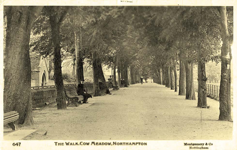 the-walk-cow-meadow-1920.jpg